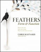 Feathers, Form and Function
